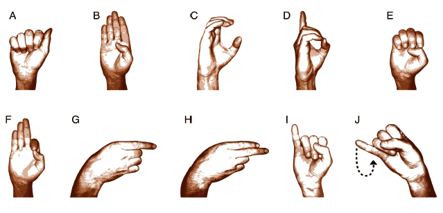 The Different Types of Sign Language